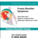 Shoulder Pain and The Likely Causes-infographic-plaza