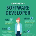 Software-Developer-anatomy-infographic-plaza