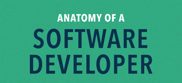 Software-Developer-anatomy-infographic-plaza-thumb
