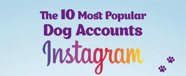 The-10-Most-Popular-Dog-Accounts-on-Instagram-Infographic-plaza-thumb