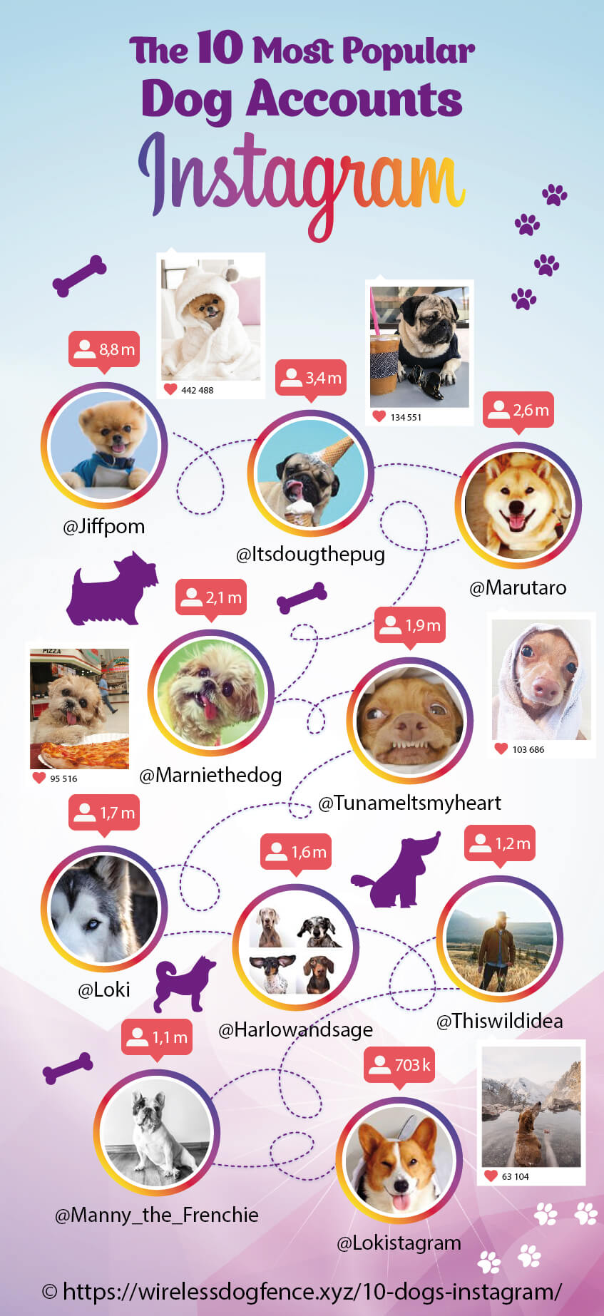 The-10-Most-Popular-Dog-Accounts-on-Instagram-Infographic-plaza