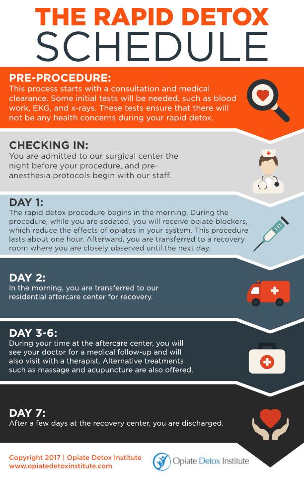The-Rapid-Detox-Schedule-Opiate-Detox-Institute-infographic-plaza