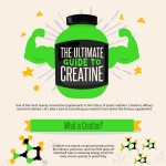 the-ultimate-guide-to-creatine-infographic-plaza