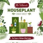 The-Ultimate-Houseplant-Cheat-Sheet-infographic-plaza
