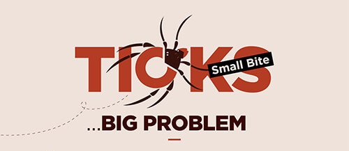 Ticks-Small-Bite_Big-Problem_2_small-infographic-plaza-thumb