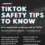 TikTok-Safety-Tips-To-Know-Safeguarde.com-infographic-plaza