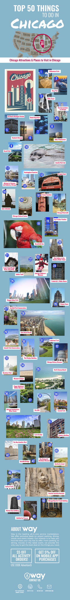 Top-Things-to-Do-in-Chicago-infographic-plaza
