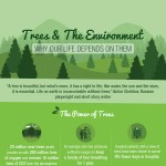Trees-The-Environment-Why-Life-Depends-On-Them-infographic-plaza