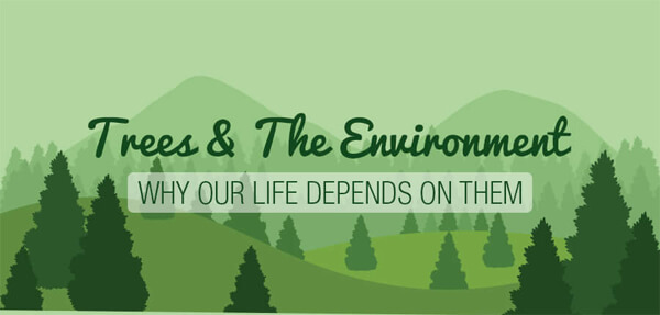 Trees-The-Environment-Why-Life-Depends-On-Them-infographic-plaza-thumb