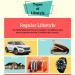 Types-of-Lifestyle-regular-minimalist-luxurious-infographic-plaza