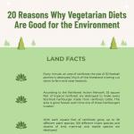 Vegetarianism-Infographic-plaza