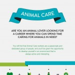 animal_care_infographic-plaza