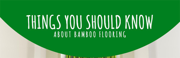 bamboo-flooring-facts-infographic-plaza-thumb