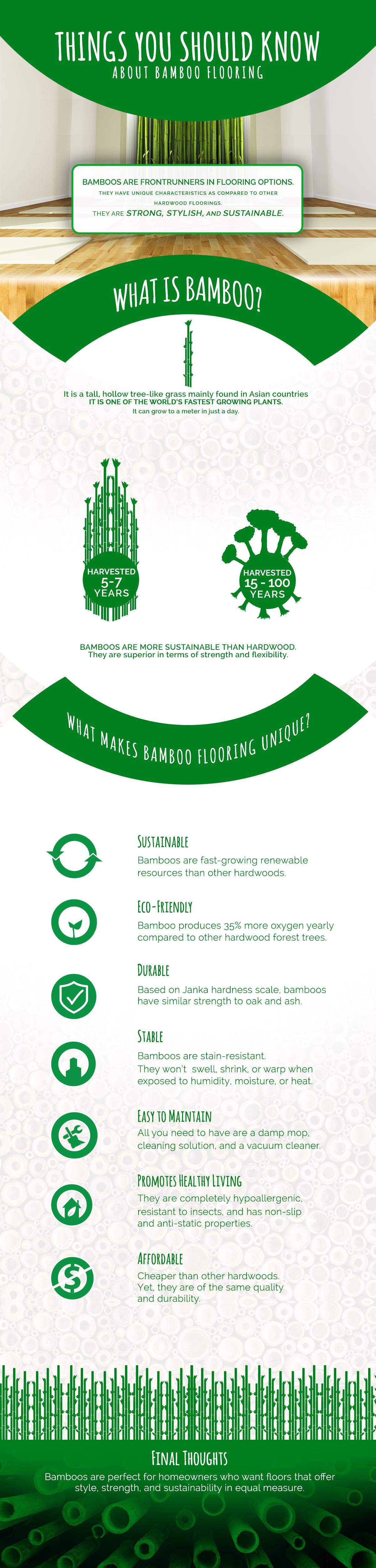 bamboo-flooring-facts-infographic-plaza