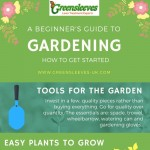 beginner-guide-gardening-infographic-plaza