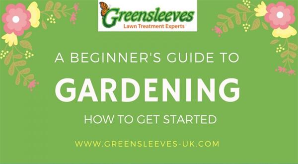 beginner-guide-gardening-infographic-plaza-thumb