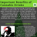 benefits-of-cannabis-drinks-infographic-plaza
