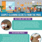 carpet-cleaning-secrets-from-pros-infographic-plaza