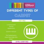 carpet-types-infographic-plaza