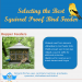 choose-right-squirrel-proof-feeder-infographic-birds