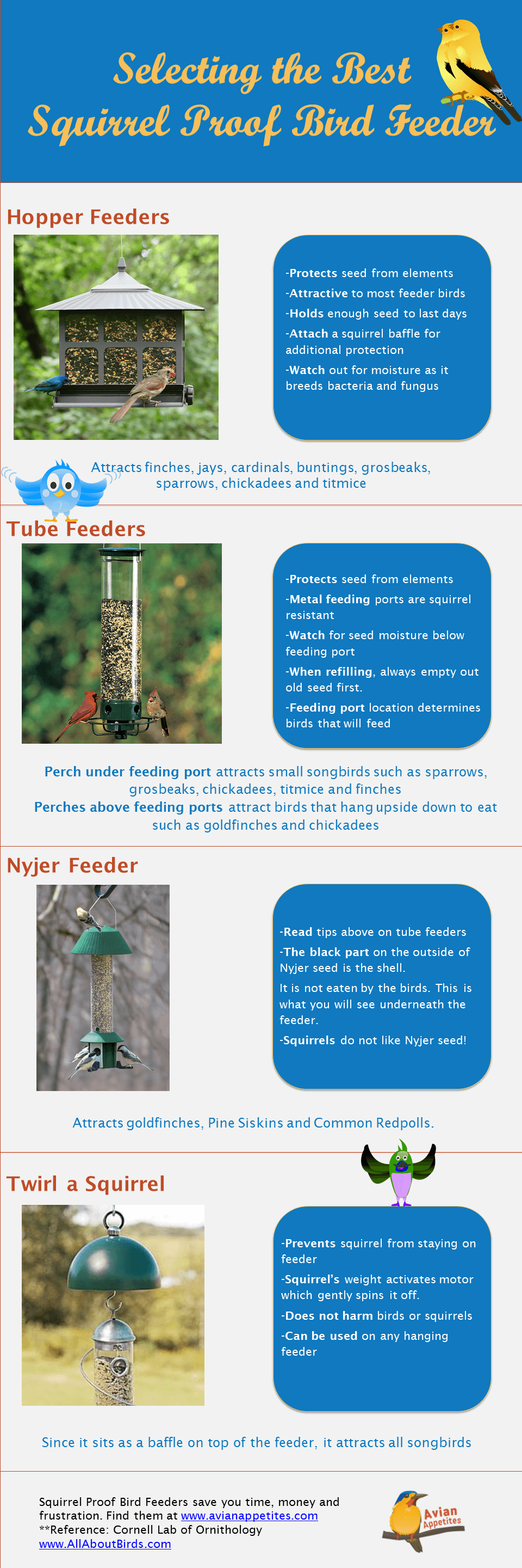 Selecting the Best Squirrel Proof Bird Feeder