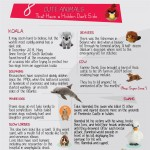 cute-animals-hidden-dark-side-infographic-plaza
