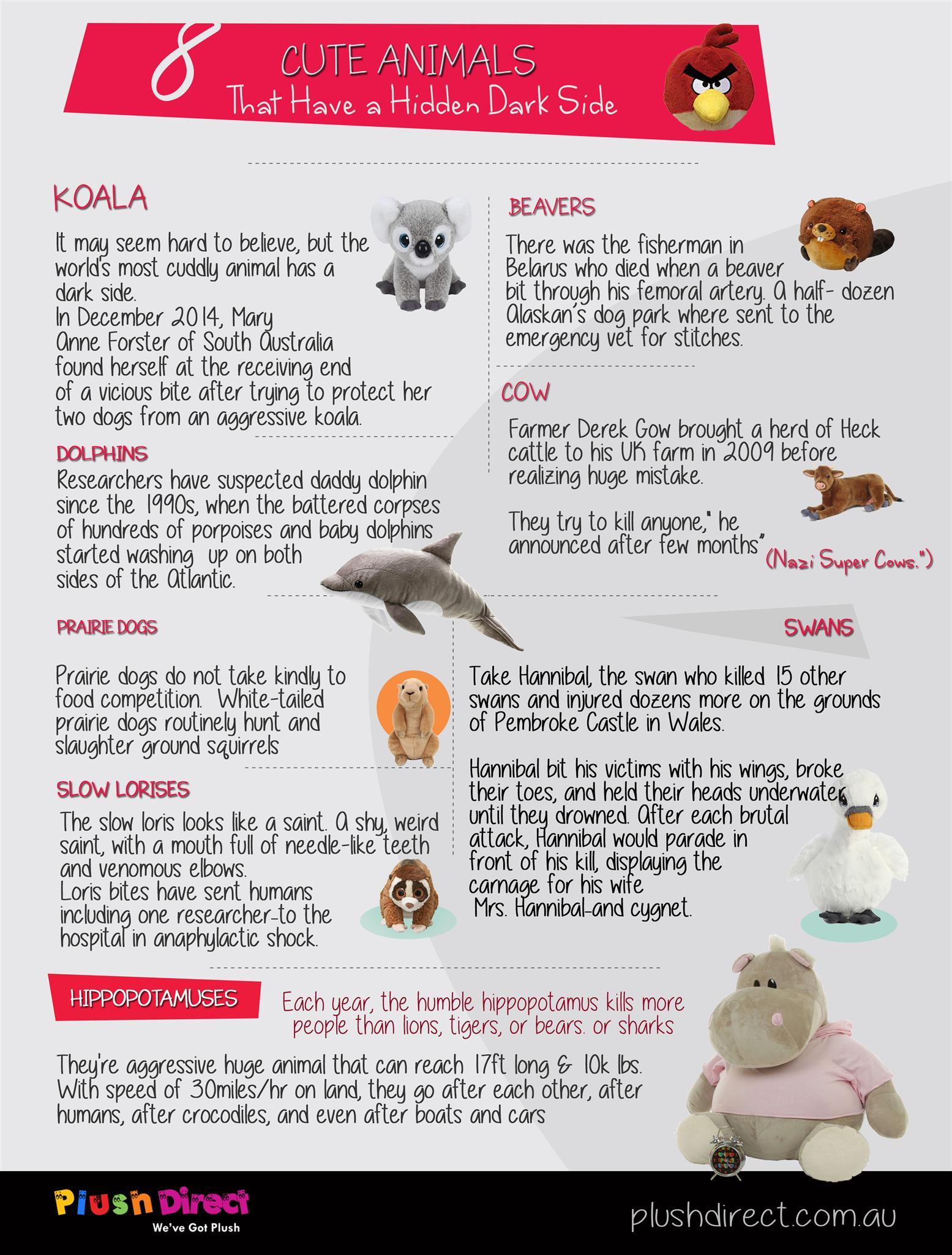 cute-animals-hidden-dark-side-infographic-plaza