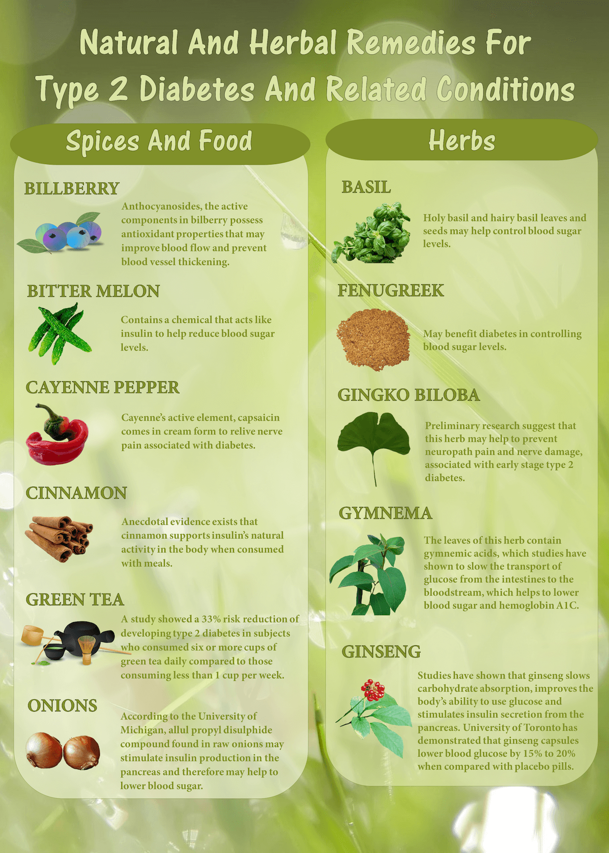 diabetes-natural-remedies-type-2-diabetes-infographic-plaza