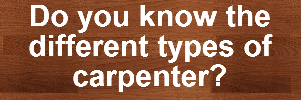 different-types-of-carpenter-infographic-plaza-thumb