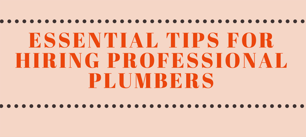 essential-tips-for-hiring-professional-plumbers-infographic-plaza-thumb