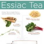 essiac-tea-infographic-plaza