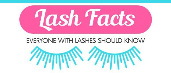 eyelash-facts-infographic-plaza-thumb