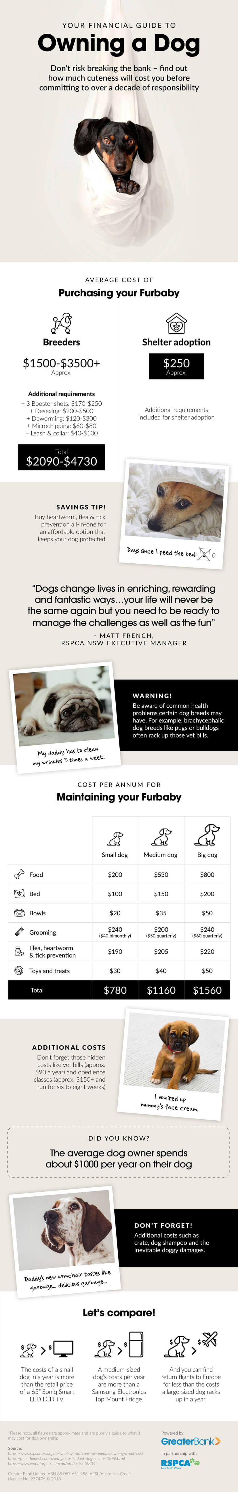 financial-guide-to-owning-a-dog-greater-bank-rspca-nsw-infographic-plaza