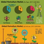 global-floriculture-market-infographic-plaza