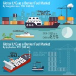 global-lng-as-a-bunker-fuel-market-infographic-plaza