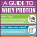 guide-to-whey-protein-infographic-plaza