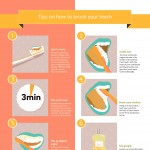 how-to-brush-teeth-properly-infographic-plaza