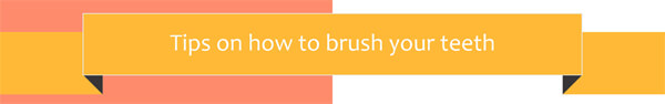 how-to-brush-teeth-properly-infographic-plaza-thumb