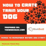 how-to-crate-train-your-dog-infographic-plaza