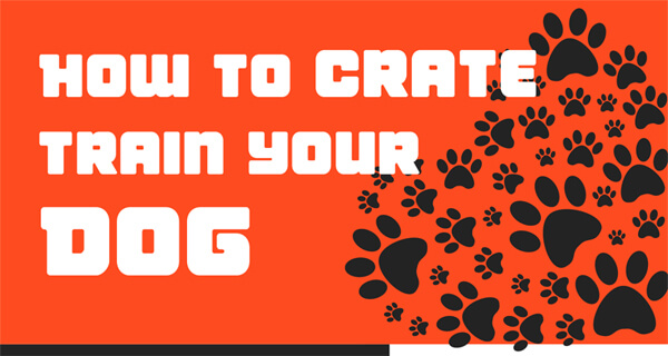 how-to-crate-train-your-dog-infographic-plaza-thumb