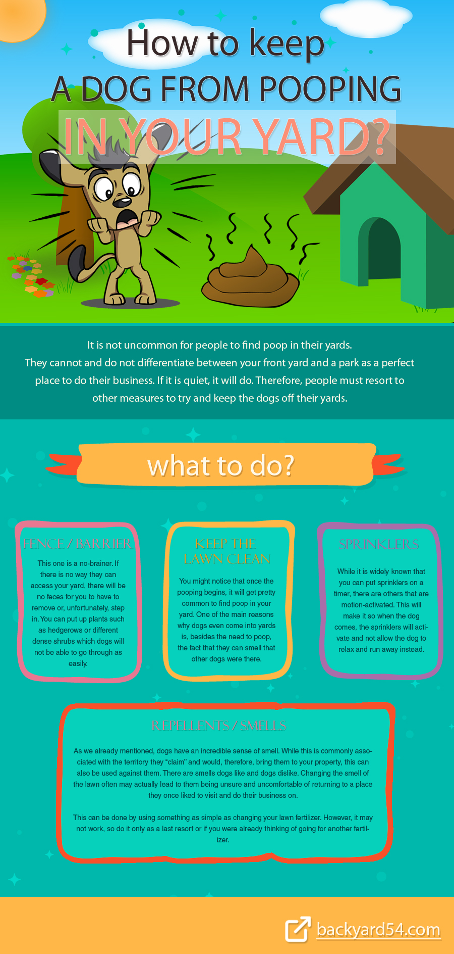 how-to-keep-a-dog-from-pooping-in-your-yard-infographic-plaza