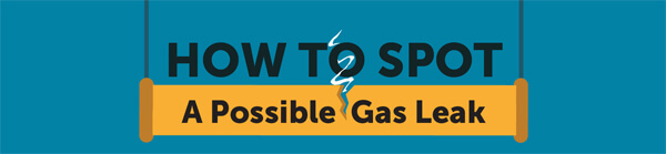 how_to_spot_a_gas_leak-infographic-plaza-thumb