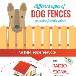 invisible-dog-fences-guide-infographic