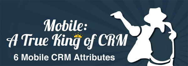 mobile-crm-infographic-plaza-thumb