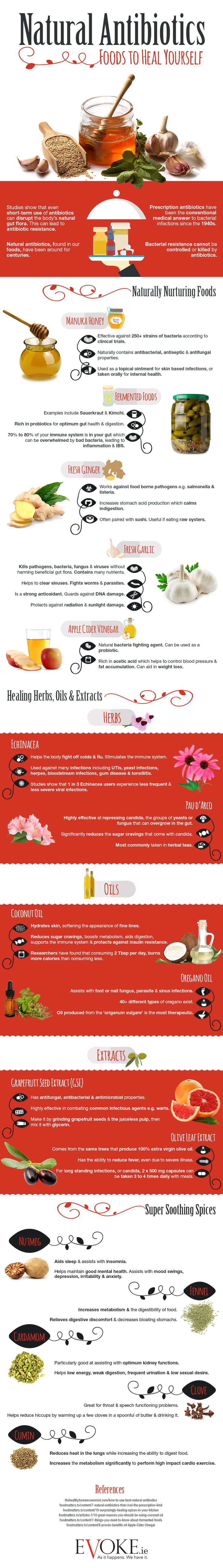 natural-antibiotics-foods-to-heal-yourself-infographic