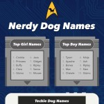 nerdy-dog-names-infographic