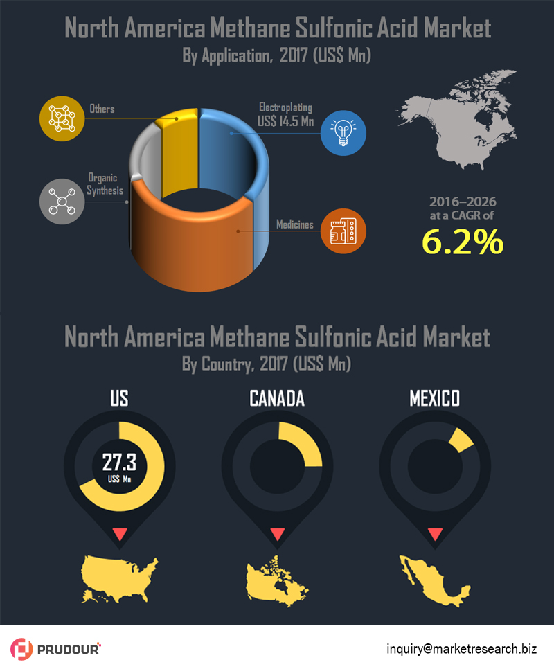north-america-methane-sulfonic-acid-market-infographic-plaza