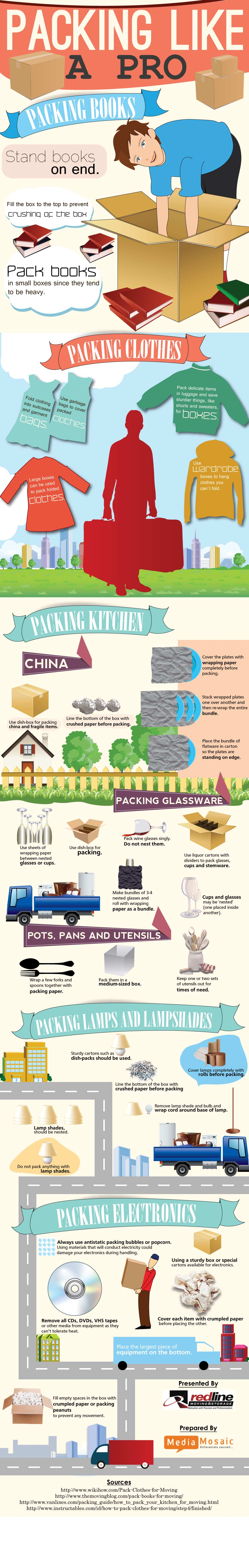 packing-like-a-pro-infographic