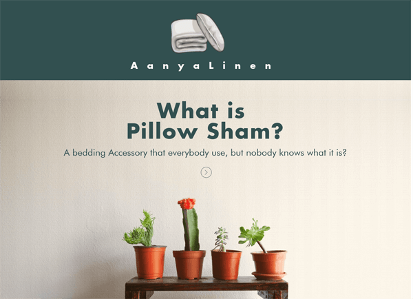 pillow-sham-infographic-plaza-thumb