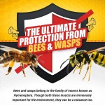 protection-from-bees-vs-wasps-infographic-plaza